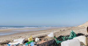 Skräp strand Foto: iStock